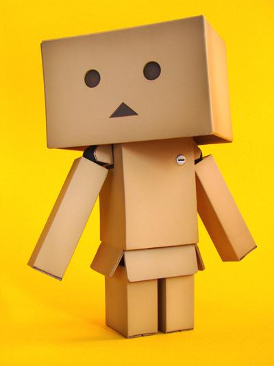 revoltech-danbo-figure-18.jpg